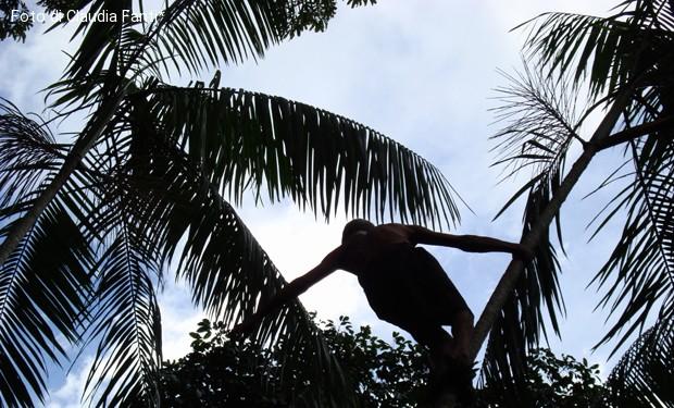 Quando è la lotta a renderci umani. La vita di un vescovo in difesa dell'Amazzonia