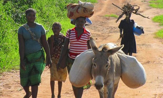 La terra, un dono per la vita.  Lettera pastorale dei vescovi del Mozambico