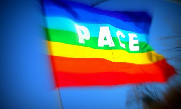 «Fare politica per i diritti e il bene comune». Dedicato all'impegno politico il messaggio del papa per la Giornata mondiale della pace