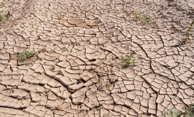 Una minaccia per il pianeta. Bolsonaro affossa la lotta contro il riscaldamento globale