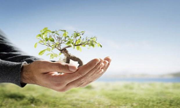 Piantano alberi a migliaia gli indigeni filippini. Un'iniziativa della Chiesa locale