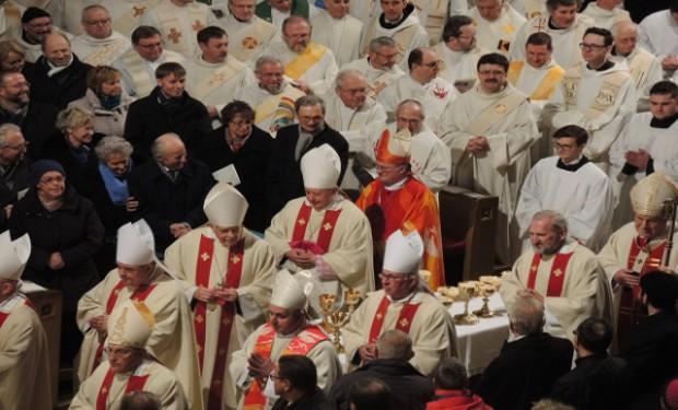 Abusi e vescovi: le parole