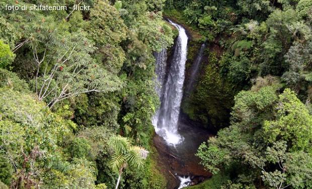 L'Amazzonia, il Sinodo e noi
