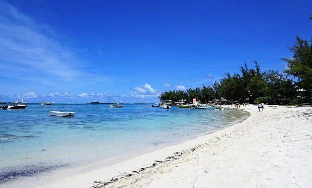 Il petrolio sta soffocando il mare di Mauritius.