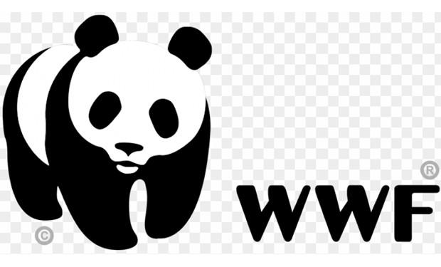 Tutela dell'ambiente, tutela della salute umana. Il WWF a un anno dal primo lockdown