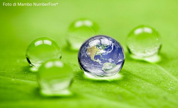 Religiose Usa, l'impegno per la sostenibilità ambientale