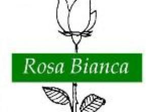 La sfida della libertà di Adriano Ossicini. Un ricordo della Rosa Bianca