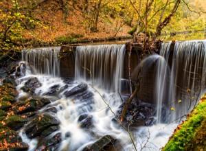 Resistenza e vita dei popoli della Terra, delle acque, della foresta. Le speranze riposte nel Sinodo