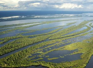 Il Covid uccide in Amazzonia. I vescovi denunciano: mai partita la campagna vaccinale